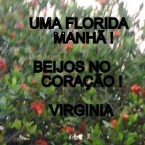 UMA FLORIDA MANHÃ !